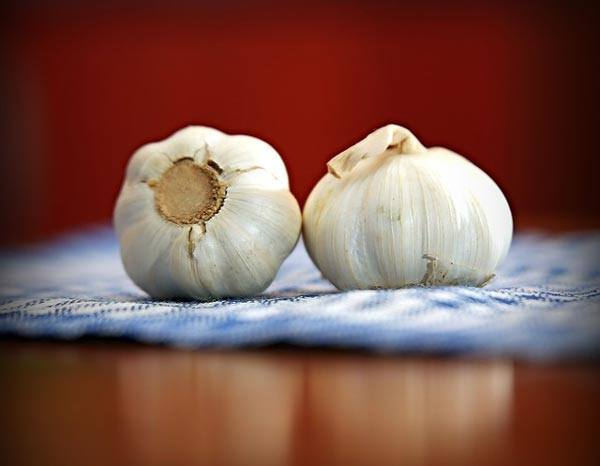 Get Rid of Garlic Breath Fast